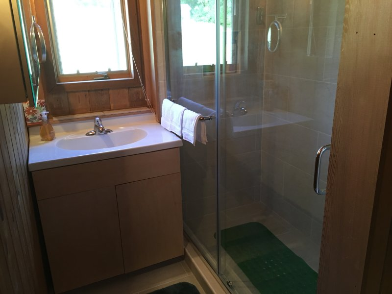 New bathroom: sink and shower