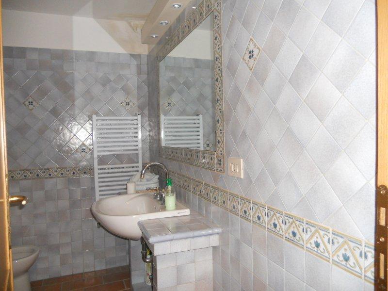 Il servizio igienico con doccia