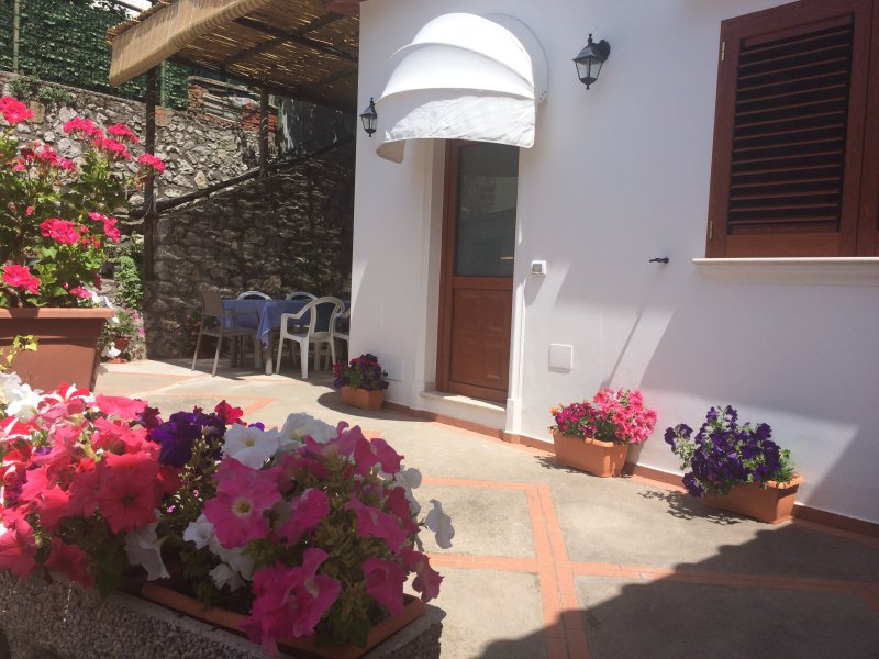 Casetta anacaprese, holiday rental in Island of Capri