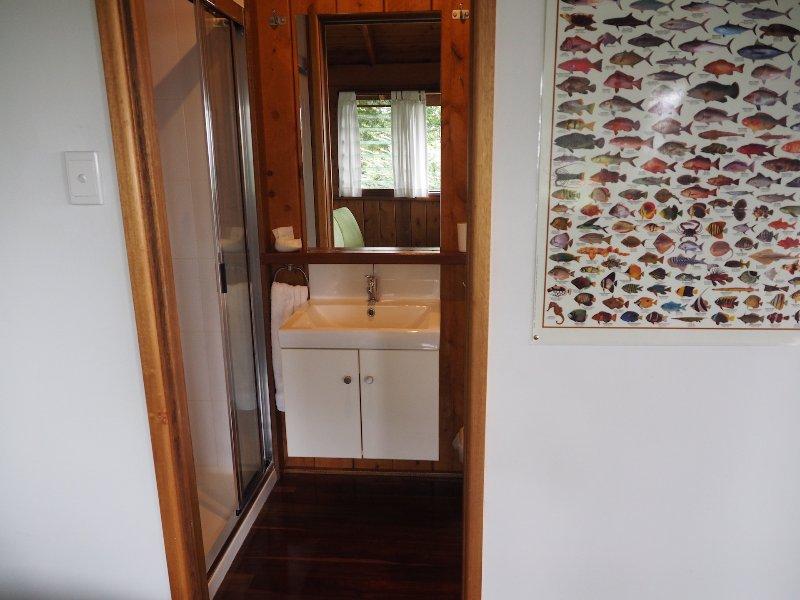 upper bathroom basin