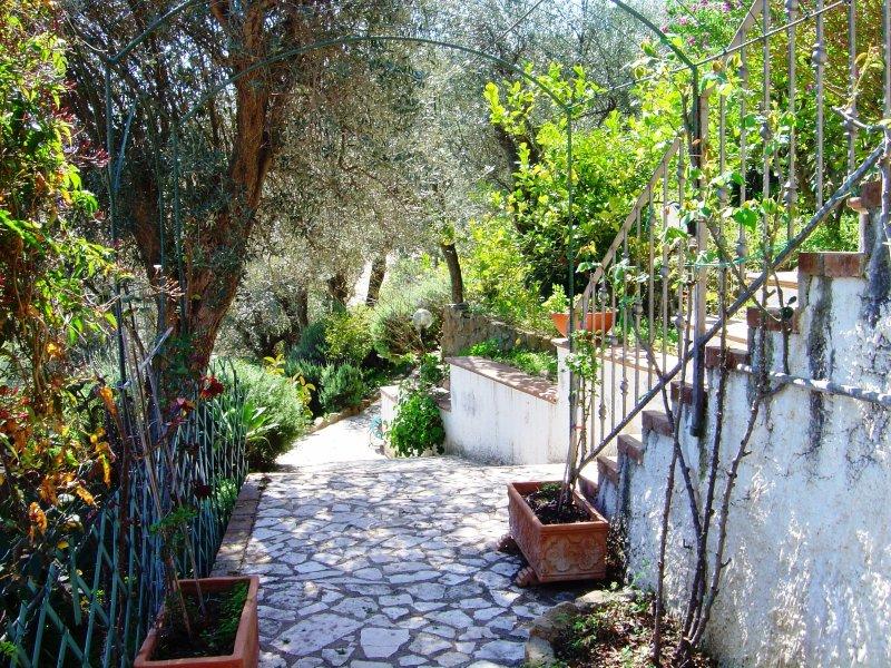 In Villa - appartamento Salina, 2/3 posti letto, holiday rental in Marina di Caronia