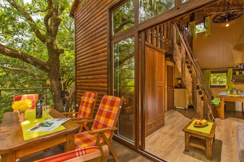 Unique treehouse near Dubrovnik