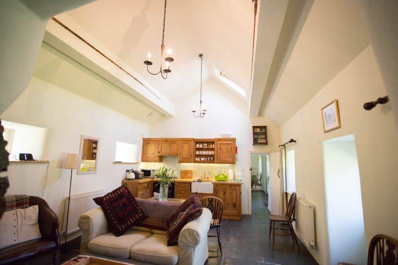Living room/ kitchen area