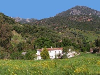 Casa rural molino cruz, Finca 3H, vistas al rio y montagna, piscina privada, vacation rental in Sierra de Grazalema Natural Park