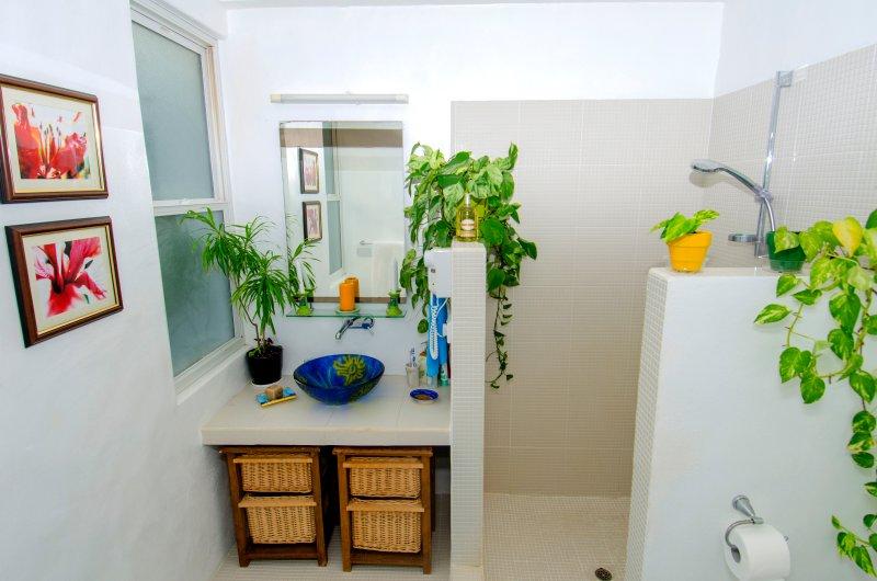 Main house master bathroom