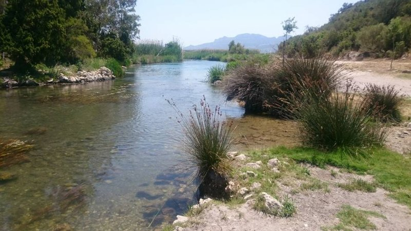 Within 15 minutes drive are the protected wetlands of the Marjal