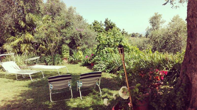 Giardino con lettini per abbronzarsi