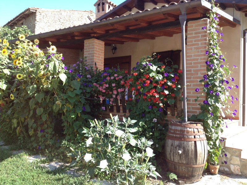 casina vista monti ai piedi del Gran Sasso Laga Park a pochi km da L'Aquila, casa vacanza a Barete