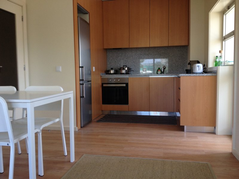 Nice Apartment Downtown, holiday rental in Avintes