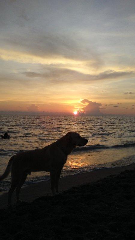 Sunset at Brohard beach