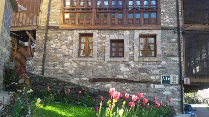 Apartamentos rurales casa xepo, holiday rental in Ibias Municipality