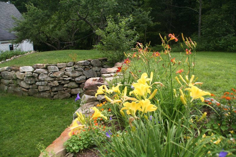 A portion of our flower gardens by the old barn cellar.
