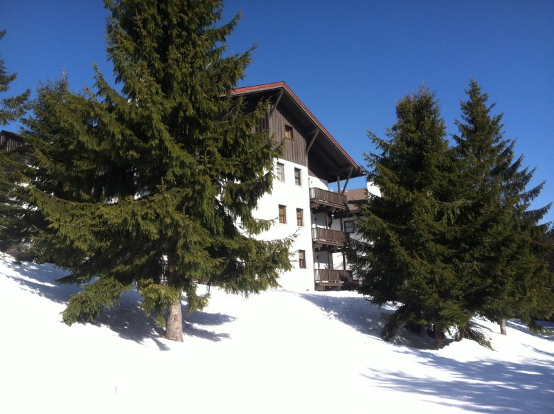 Whistlepunk - truly a slopeside attraction, holiday rental in Slatyfork