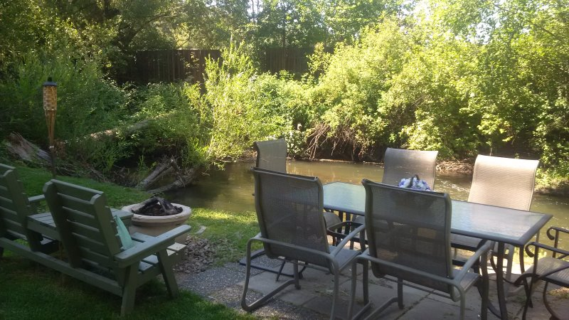 creek in the back yard with beavers, ducks, herons and other birds.  monarch butterflies