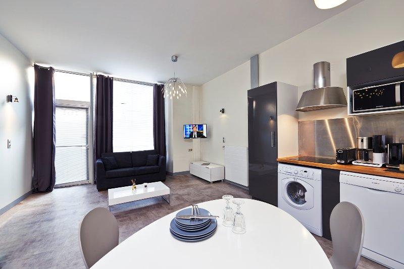 Studio Centre-ville Angers 45m² - Tuffeau, location de vacances à Briollay