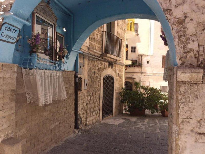 Corte Carducci Apartament, holiday rental in Bari