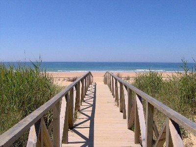 A bridge to paradise ...