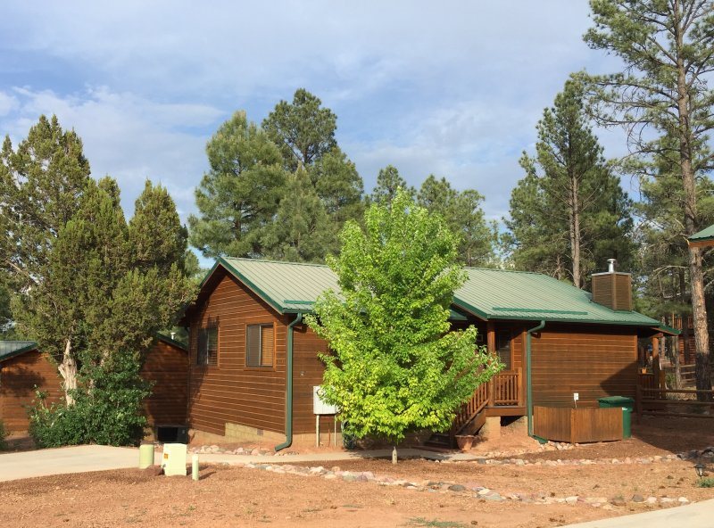 Peaceful Pines Cabin! Flat driveway and about 6 steps to get into the cabin.