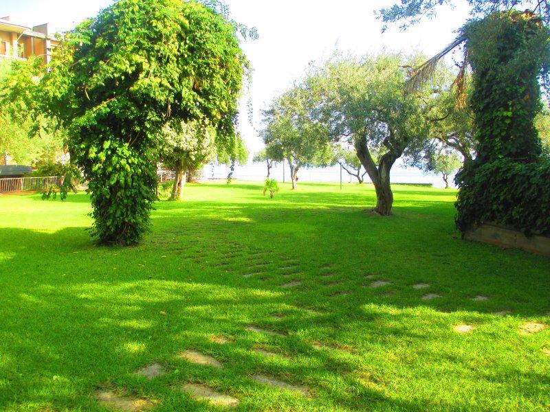 Common garden !