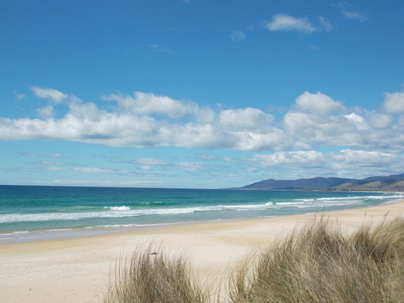 This beautiful beach is just 60 seconds from Scamander Dunes front door!