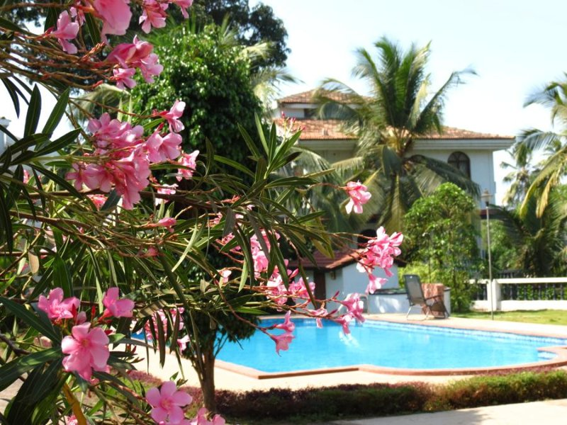 Goa Rentals 3 Bhk duplex Villa at Arpora, 5 mins to Baga beach, holiday rental in Parra