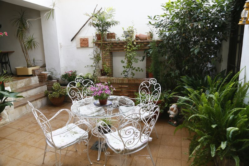 Nice Andalusian patio