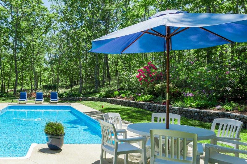 Pool & Yard Area