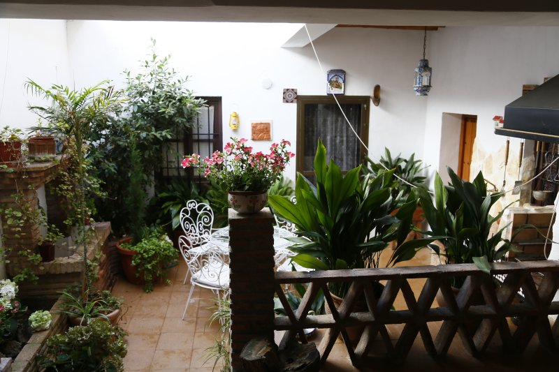 typical Andalusian patio inside the house