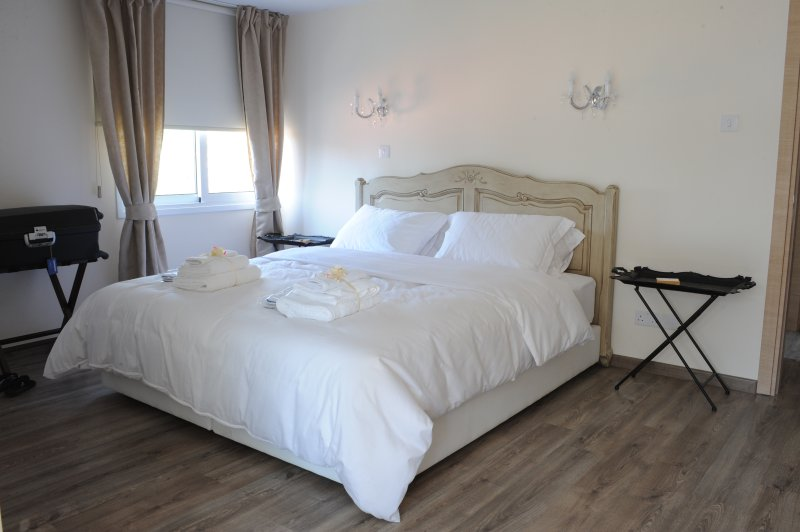 THE CENTRAL SUITE NICOSIA , IN THE HEART OF TOWN, Ferienwohnung in Nikosia