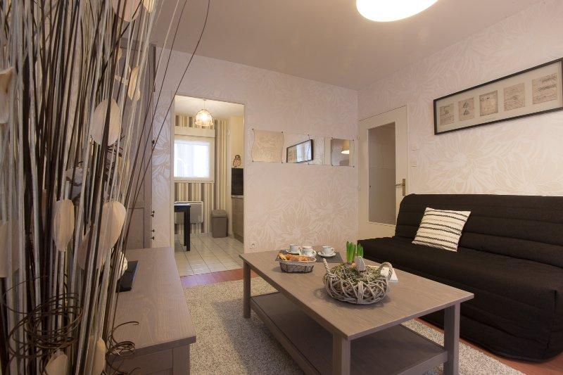 Chouette appartement en plein coeur de Dijon, location de vacances à Dijon