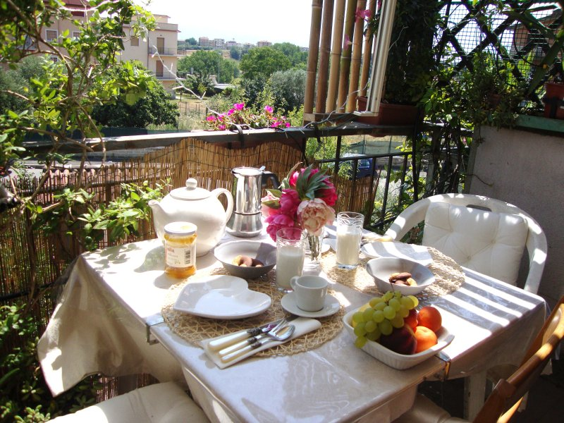 Beautiful sunny apartment with balcony, holiday rental in Setteville
