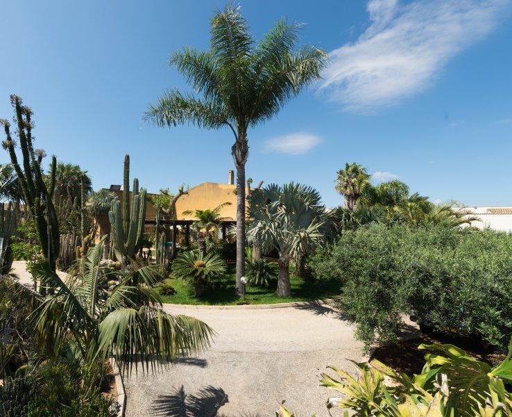 Oasi delle Succulente, holiday rental in Parrinello