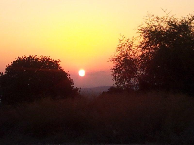 sunset at the british park