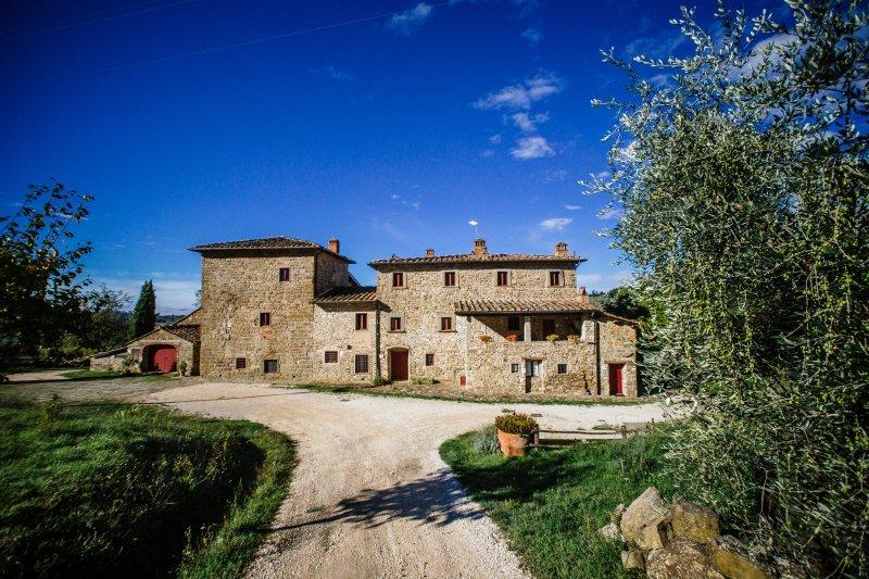 FARMHOUSE NEAR FLORENCE -  BOTTI, holiday rental in Montemignaio