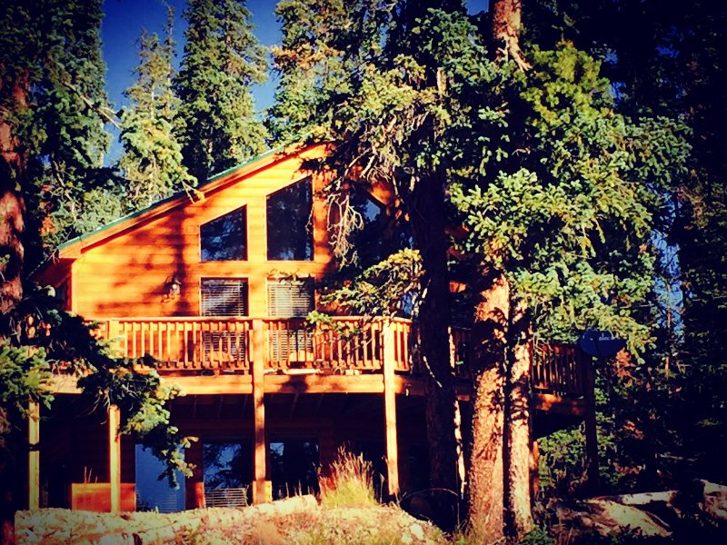 Incredible location, 11,000 feet nestled in High Alpine fir & Lodgepole Pines.