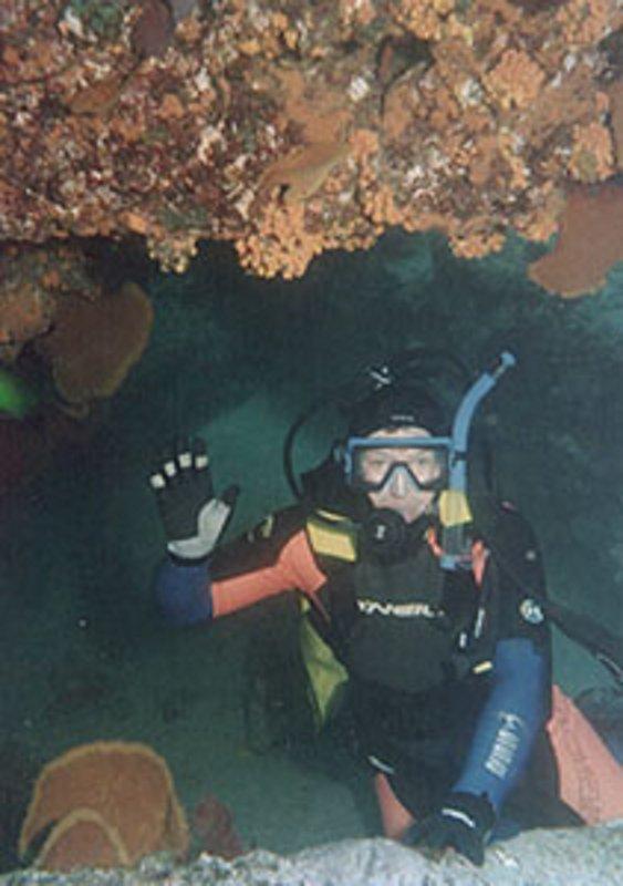El buceo en aguas cristalinas de Cabo Pulmo Parque Nacional Marino