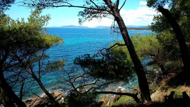 caraibesque paradiso selvaggio sul singolo riviera chilometro !!!! spiagge di sabbia, isole!