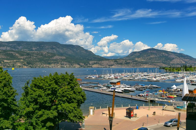 Profitez de vue ensoleillée sur le lac et la marina du pont