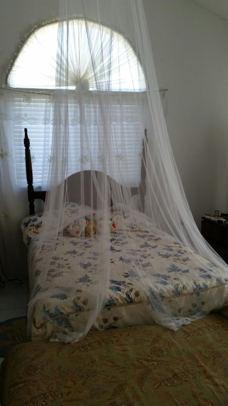 Bedroom with bed net and day bed