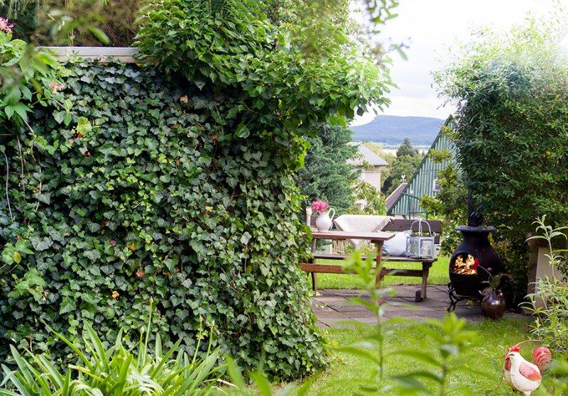 BBQ in the garden