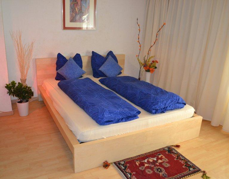 Zurlinden Studio Apartment, location de vacances à Obfelden