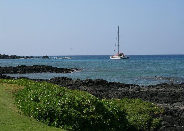 Mauna Lani Beach Club catamaran