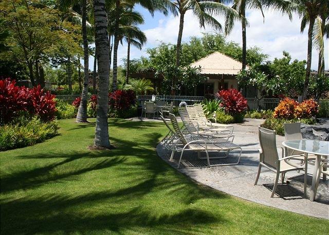 Palm Villas Pool Area