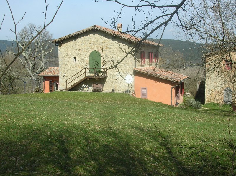 Siena in the country Nature and culture, holiday rental in Orgia