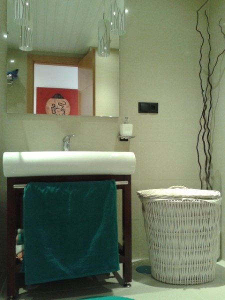 Bathroom 2. One piece sink, water, container for dirty clothes and accessories. including decoration