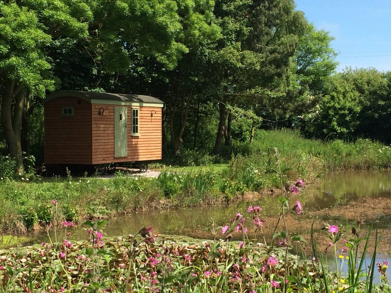 Little Otchan Shepherds Hut, holiday rental in Patrington