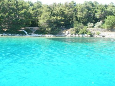 Apartments Mia(Ap5)-island Molat, vacation rental in Molat Island