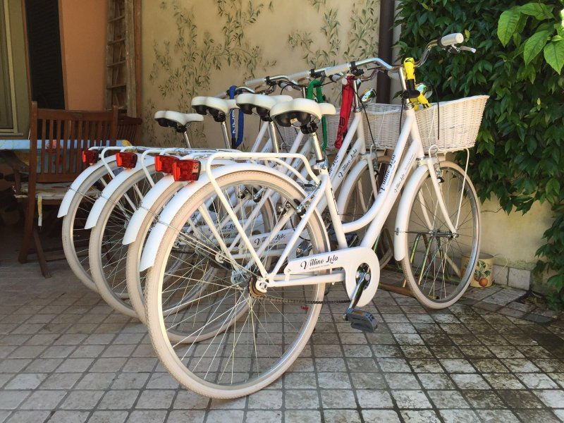 Four bicycles for guests