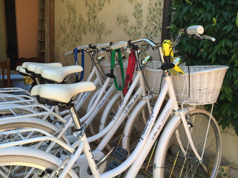 Four bicycles with baskets