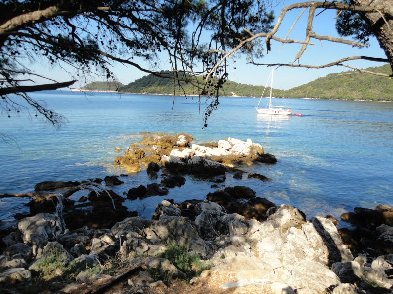 Apartments Livia (studio Blue) island of Lastovo, location de vacances à Lastovo Island